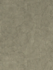 wall texture.png